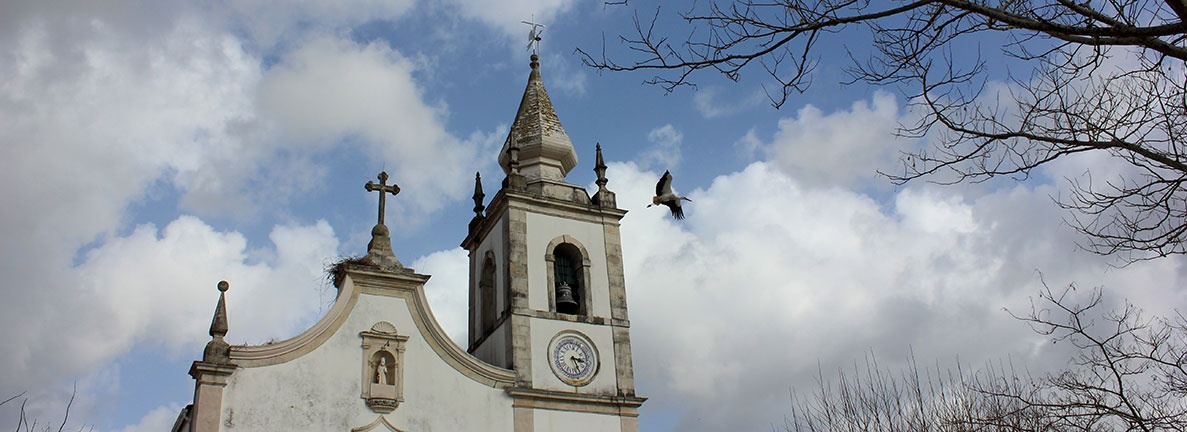 igreja cegonha