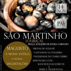 São Martinho - Magusto